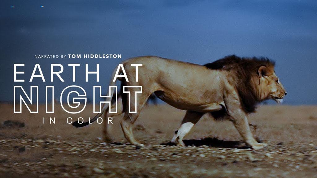 苹果TV自然纪录片《夜色中的地球》,抖森担任旁白