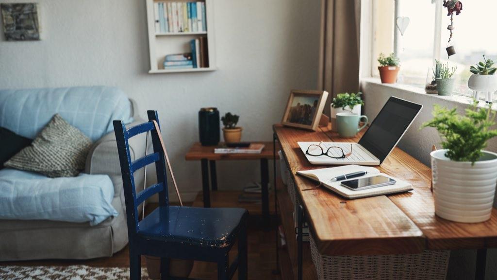 居家工作学习效率低?指南收好👩🏻💻